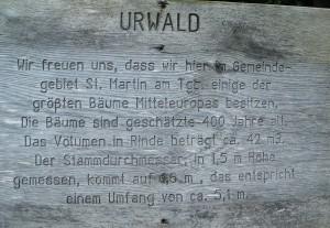 Urwaldschild