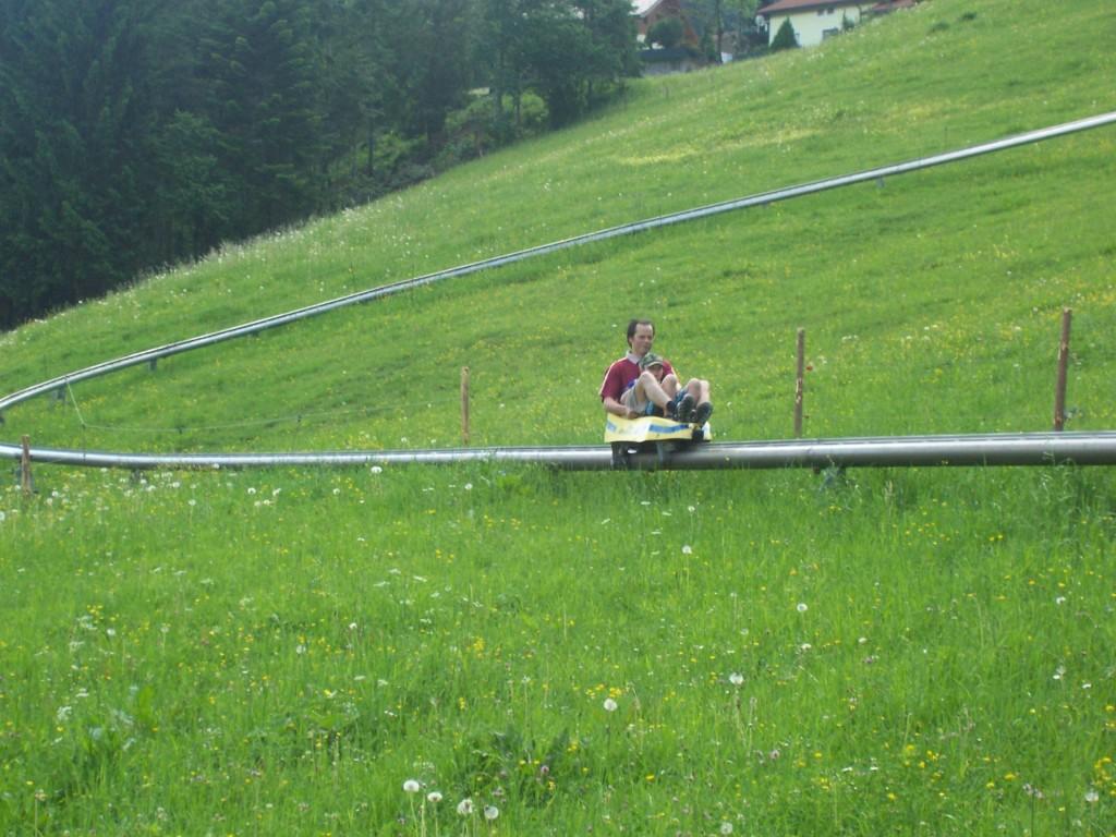 Sommerrodeln in Abtenau