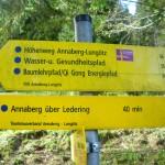 Baumlehrpfad zwischen Annaberg und Lungötz