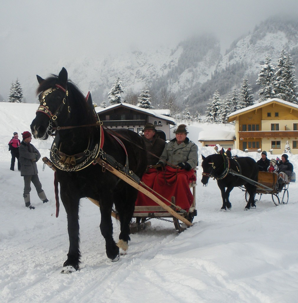 Winterausfahrt-2010