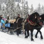 Winterausfahrt-Lämmerhofs-P
