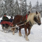 Winterausfahrt_10