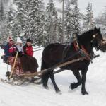 Winterausfahrt_11
