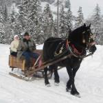 Winterausfahrt_12