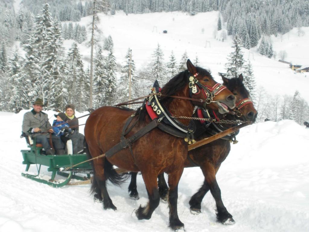 Winterausfahrt_13