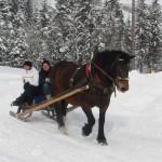 Winterausfahrt_14