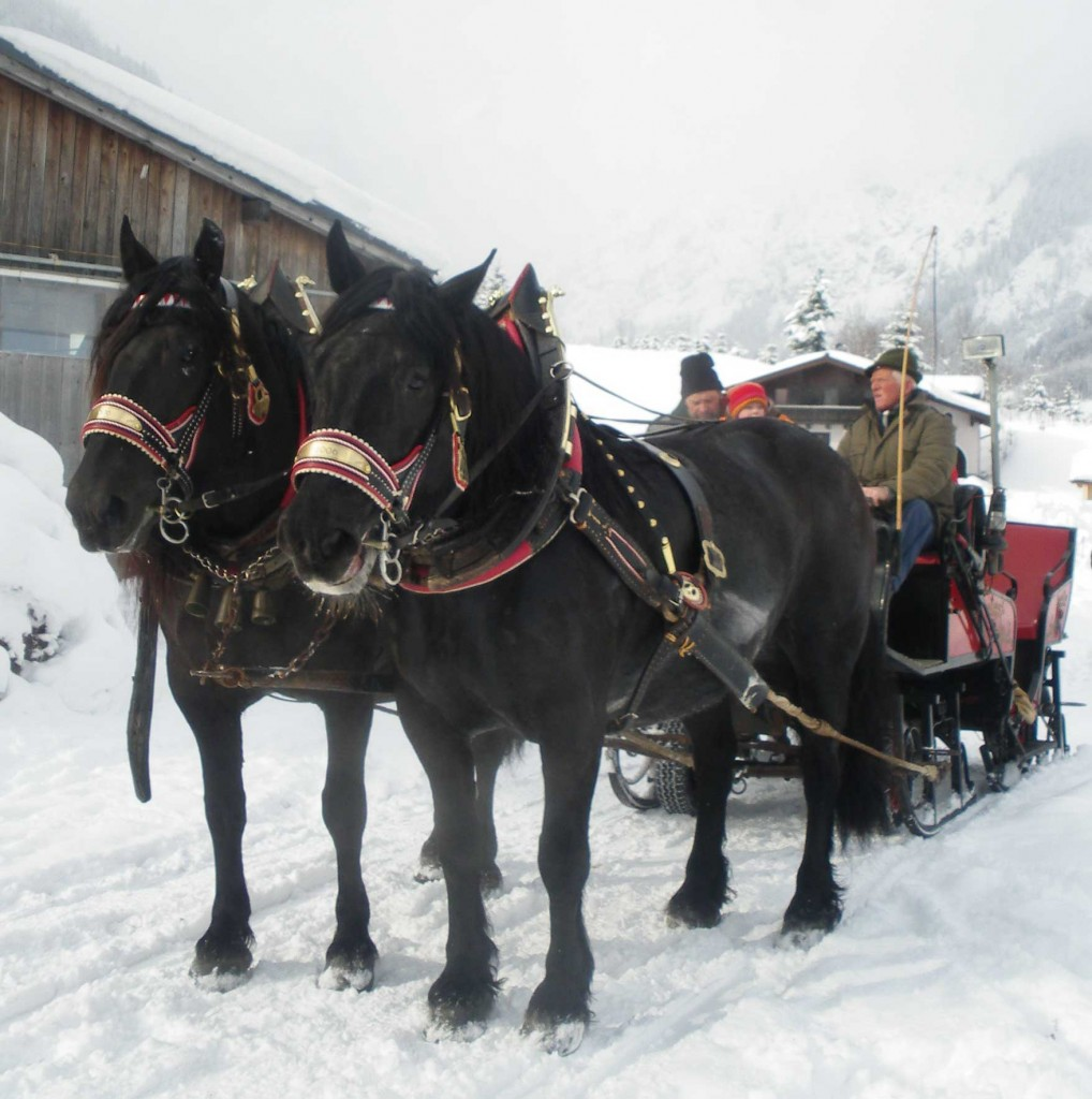 Winterausfahrt_6