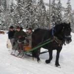 Winterausfahrt_8