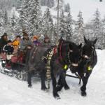 Winterausfahrt_9