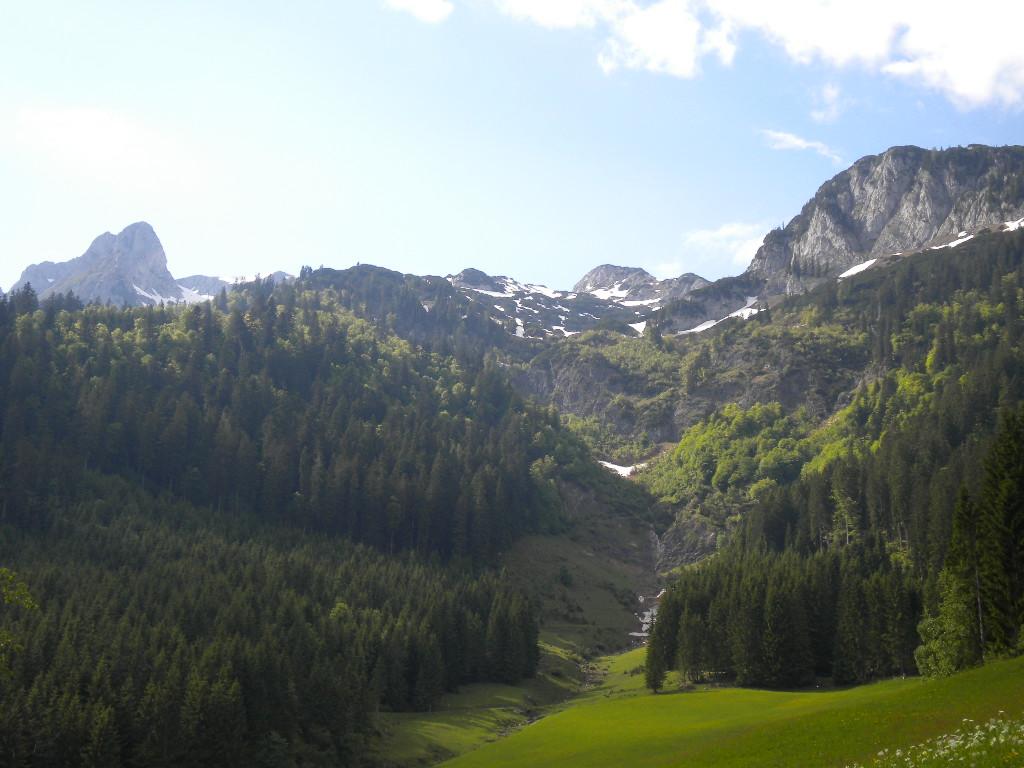 Aussicht beim Nordic Walking im Salzburger Land