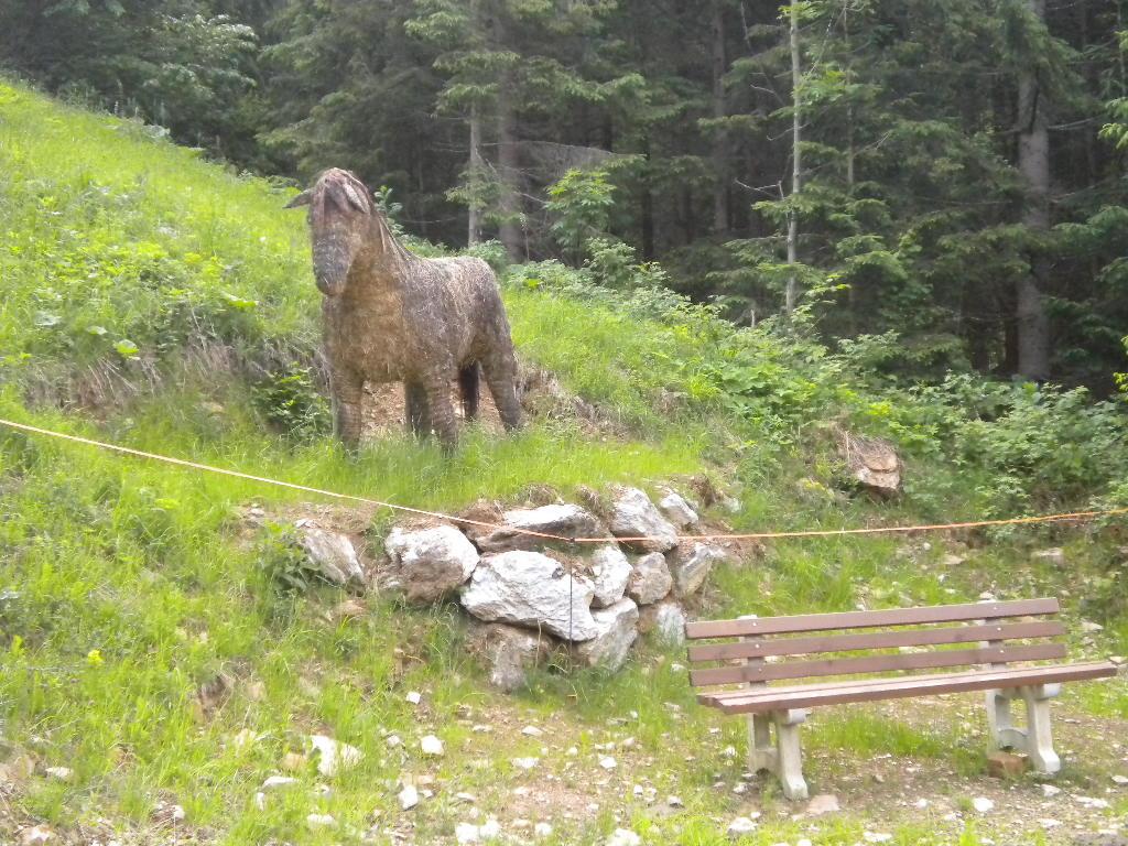 HeuART-Pony im Salzburger Land