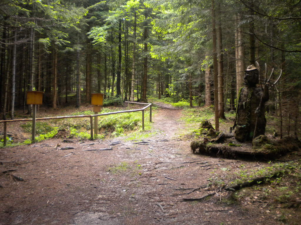 Wandern im Salzburger Land - Wanderweg