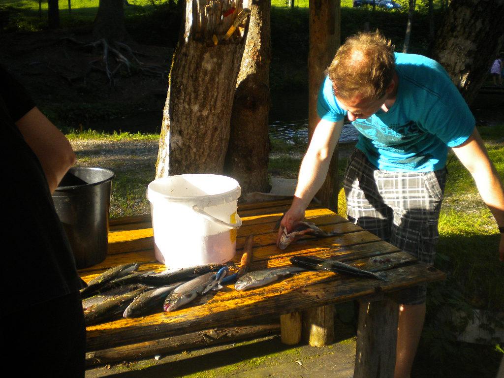 Zubereiten der Forellen