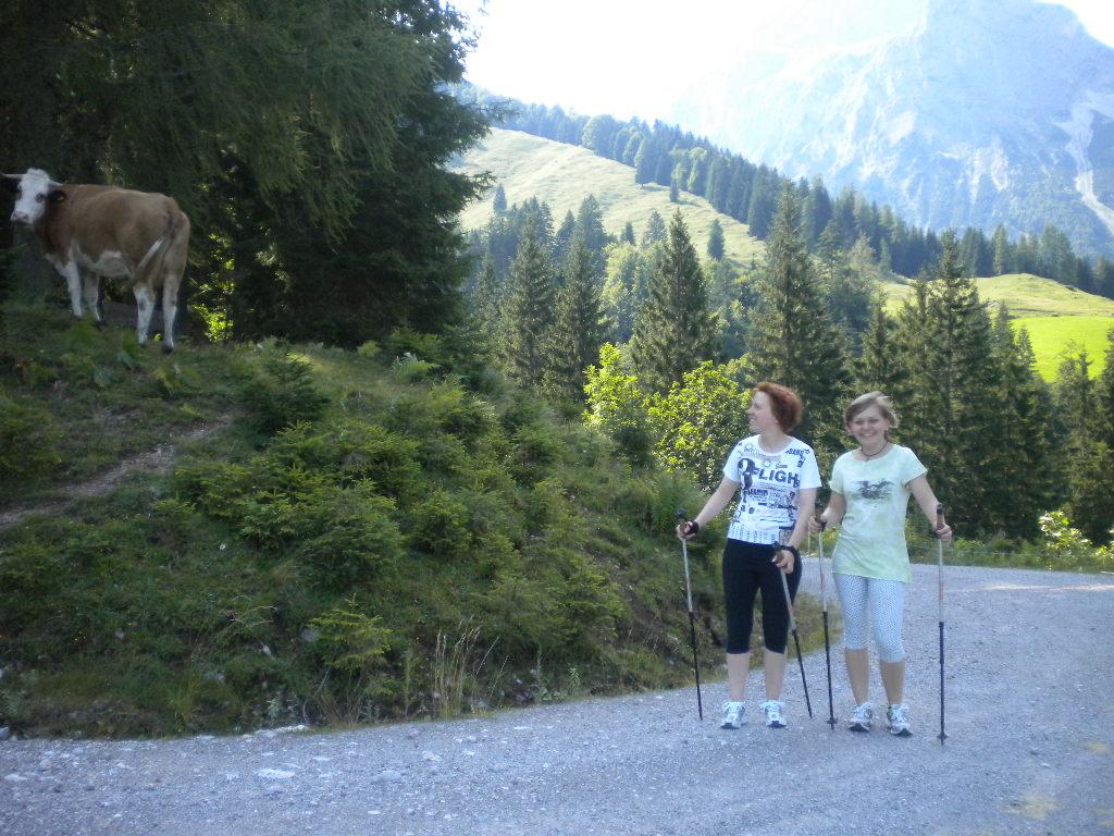 Nordic Walking in der Natur - auch Kühe trifft man am Wegesrand