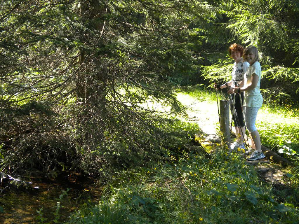Nordic Walking-Strecke im Wald