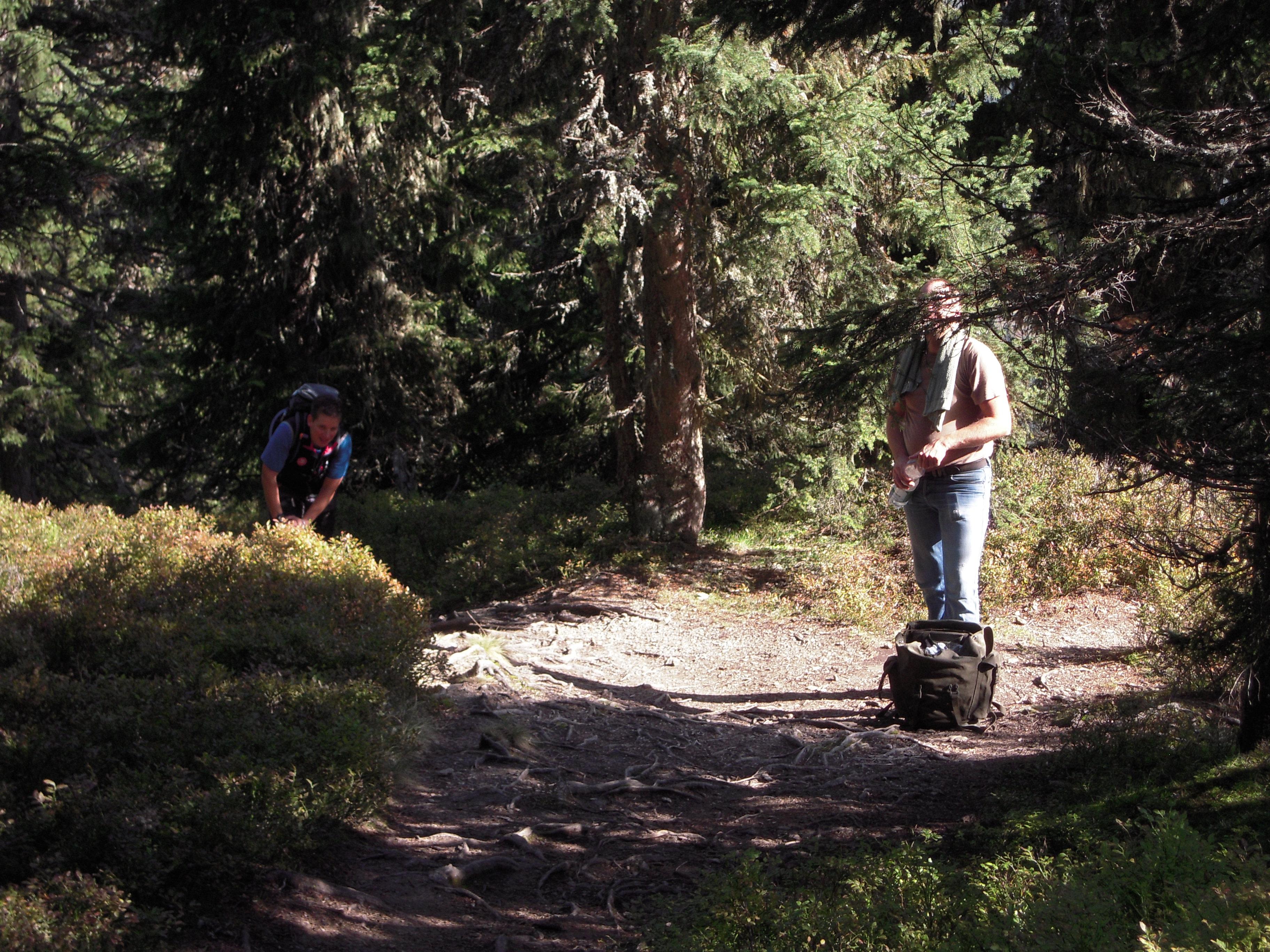 Wanderungen im Tennengebirge
