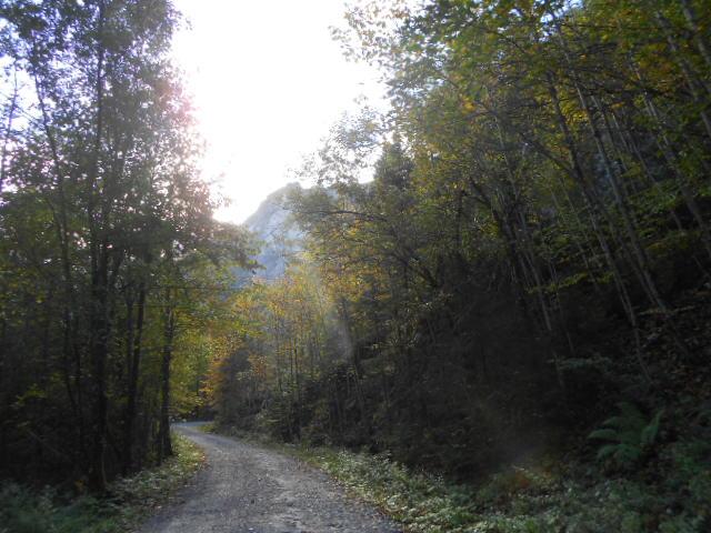 Herbstwanderung in Abtenau