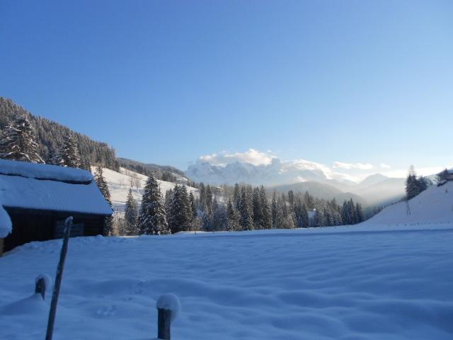 Traumhaftes Wetter zum Schneeschuhwandern