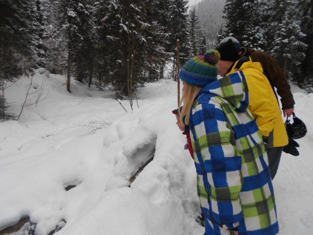 Das verschneite Lammertal