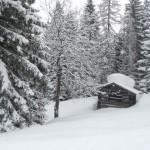 Verschneite Hütte im Wald