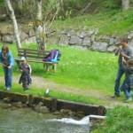 Forellen fischen