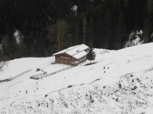 Almhütte im Winter im Lammertal