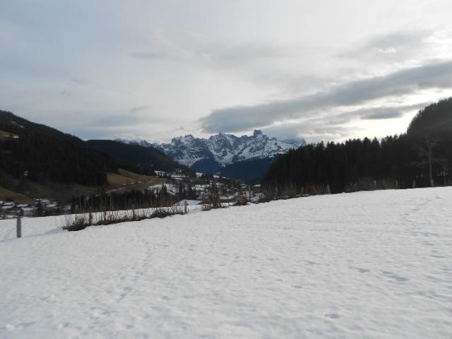 Winterlandschaft mit Schneefeld im Lammertal