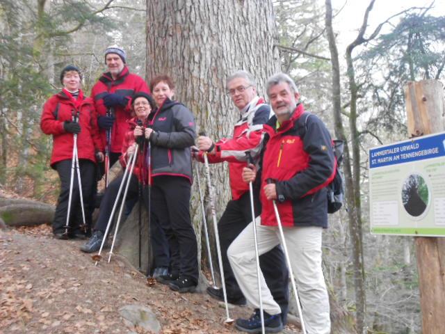 Wandern im Lammertaler Urwald bei St. Martin am Tennengebirge