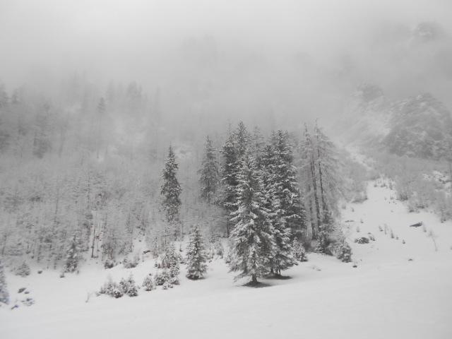 Schneegestöber im Lammertal