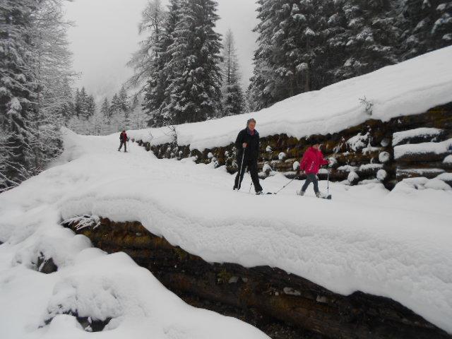 Schneeschuhwanderer an einem Bach im Lammertal