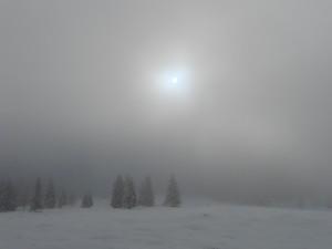 Nebeltag im Winter im Lammertal