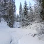 Winter im Lammertal erleben