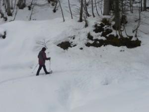 Schneeschuhwanderung im Tiefschnee
