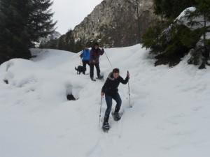 Gruppe von Schneeschuhwanderern beim Abstieg