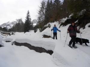 Winterwandern entlang eines Baches im Lammertal