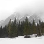 Winterkulisse im Lammertal