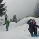 Erste Schritte auf den Schneeschuhen