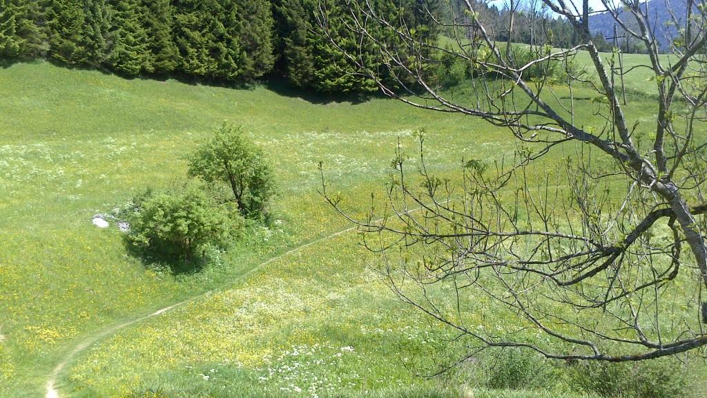 Höhenweg Annaberg und mystischer Logenplatz