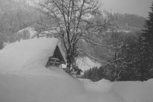Alte Scheune vor dem Lämmerhof im Lammertal
