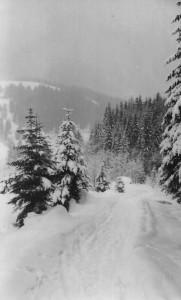 Verschneite Straße vor dem Alpengasthof Lämmerhof im Lammertakl