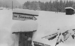 ,,Zum Alpengasthof Lämmerhof'' - Schild im lammertal