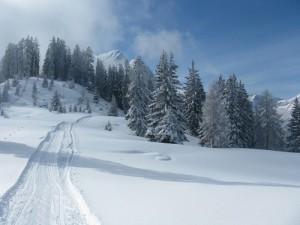 Gespurter Winterwanderweg auf die Ostpreußenhütte