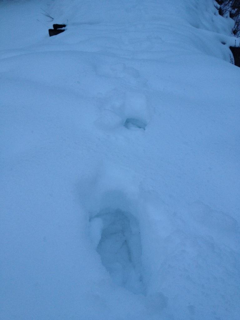 Schnee in der Aualm im Lammertal