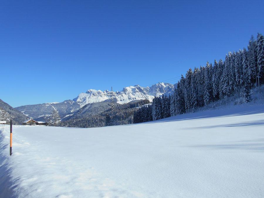 Schneeschuhwandern langlaufen stmartin 1 laemmerhof 39 s blog for Fischteich im winter