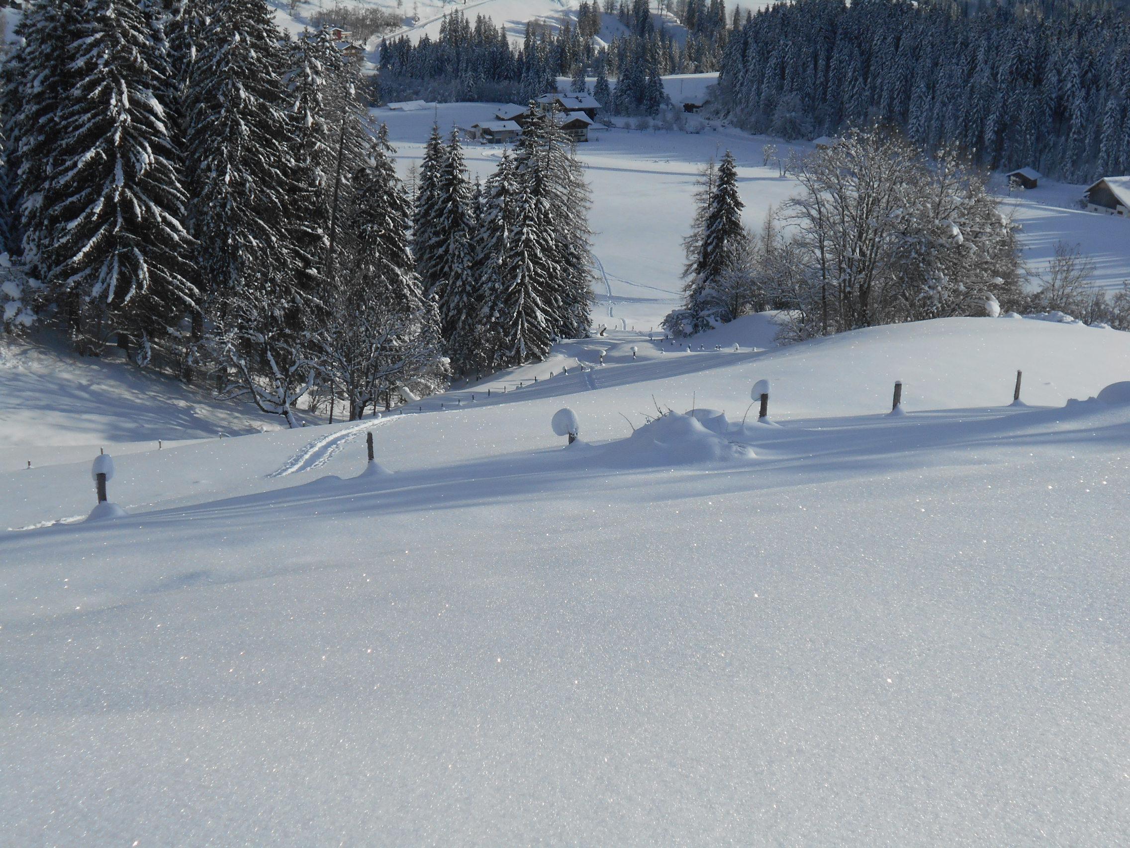 Schneeschuhwanderung 2016 01 19 10 laemmerhof 39 s blog for Fischteich im winter