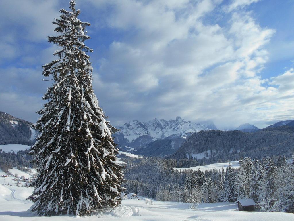 Blick auf den Gosaukamm im Winter