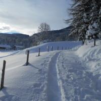 Schneeschuhwanderung zur Spießalm im Lammertal