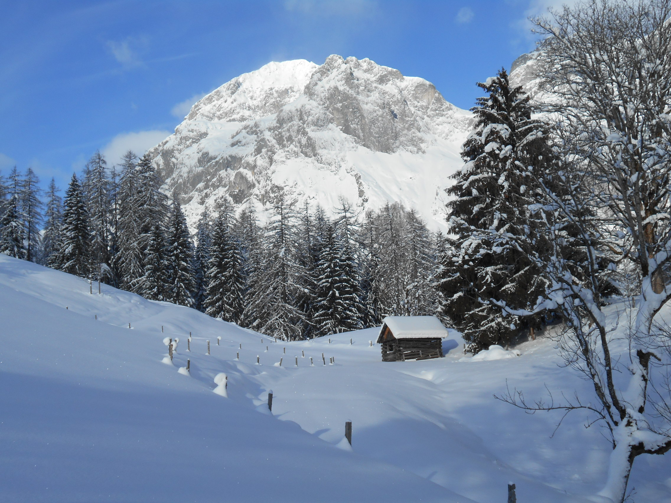 Schneeschuhwanderung 2016 01 19 4 laemmerhof 39 s blog for Fischteich im winter
