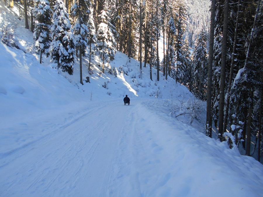 Winterwandern rodeln sittleralm 10 laemmerhof 39 s blog for Fischteich im winter