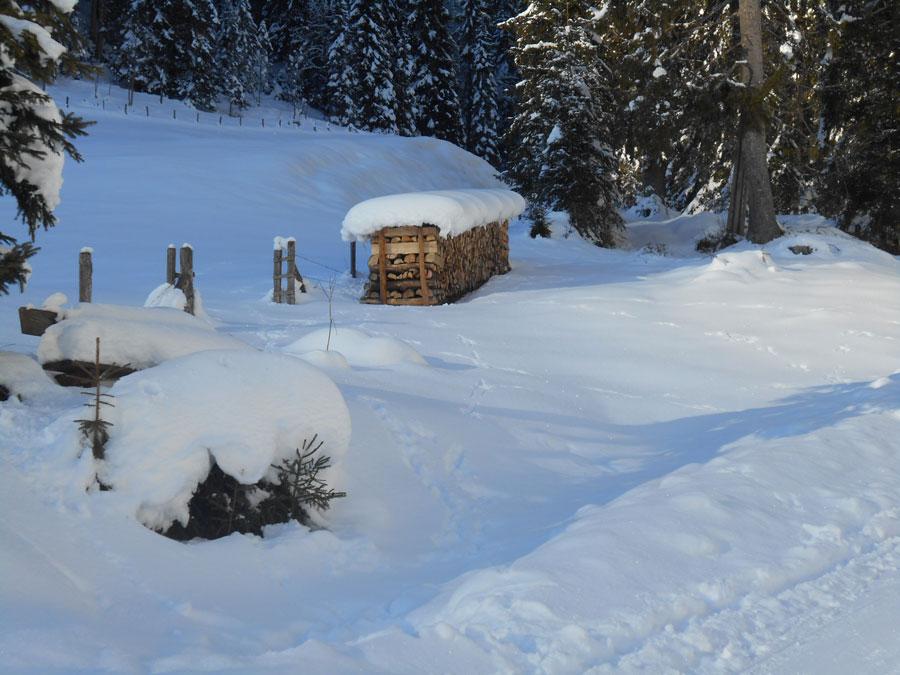 Winterwandern rodeln sittleralm 12 laemmerhof 39 s blog for Fischteich im winter